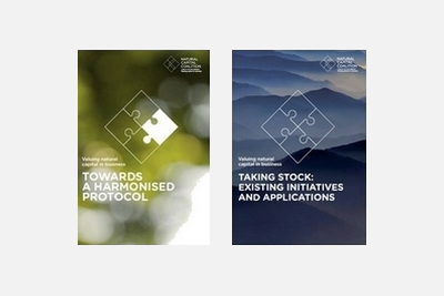 New Publications: Valuing Natural Capital in Business 2014